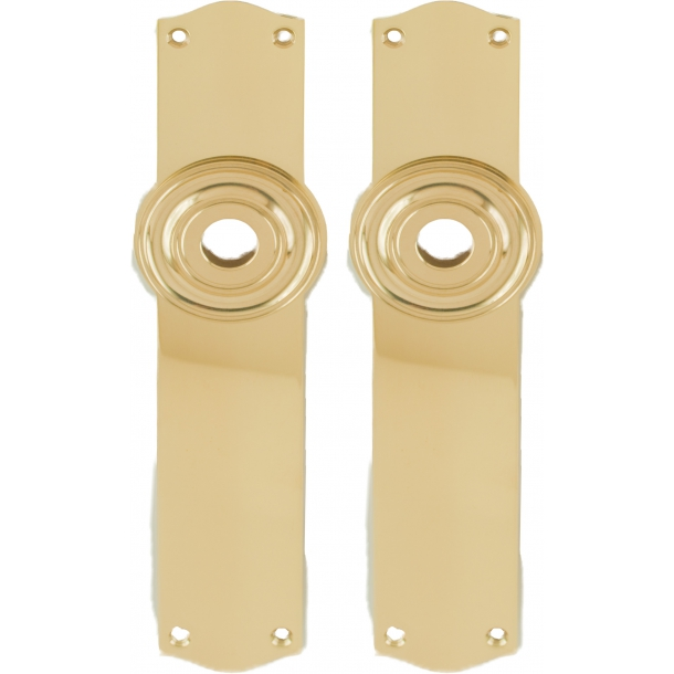 Door back plate brass - Rosset blank