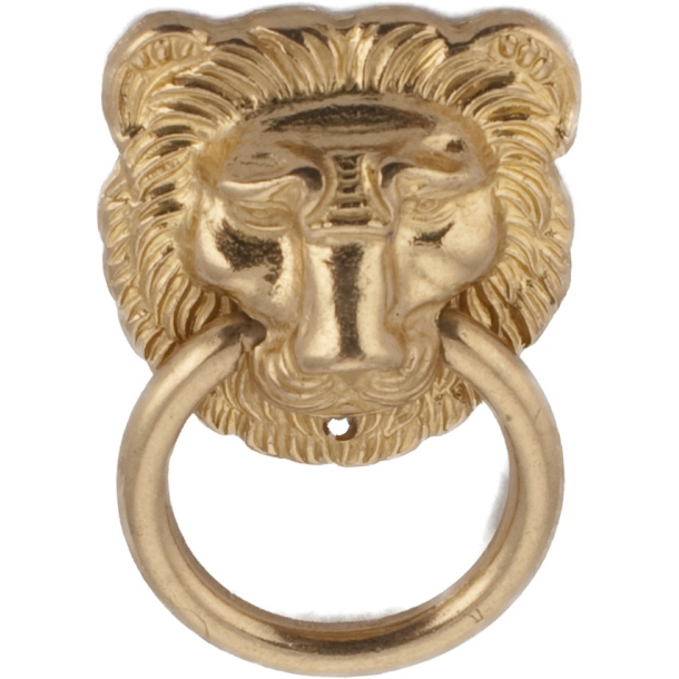 Furniture Handle 645 Lion - Brass 43 mm