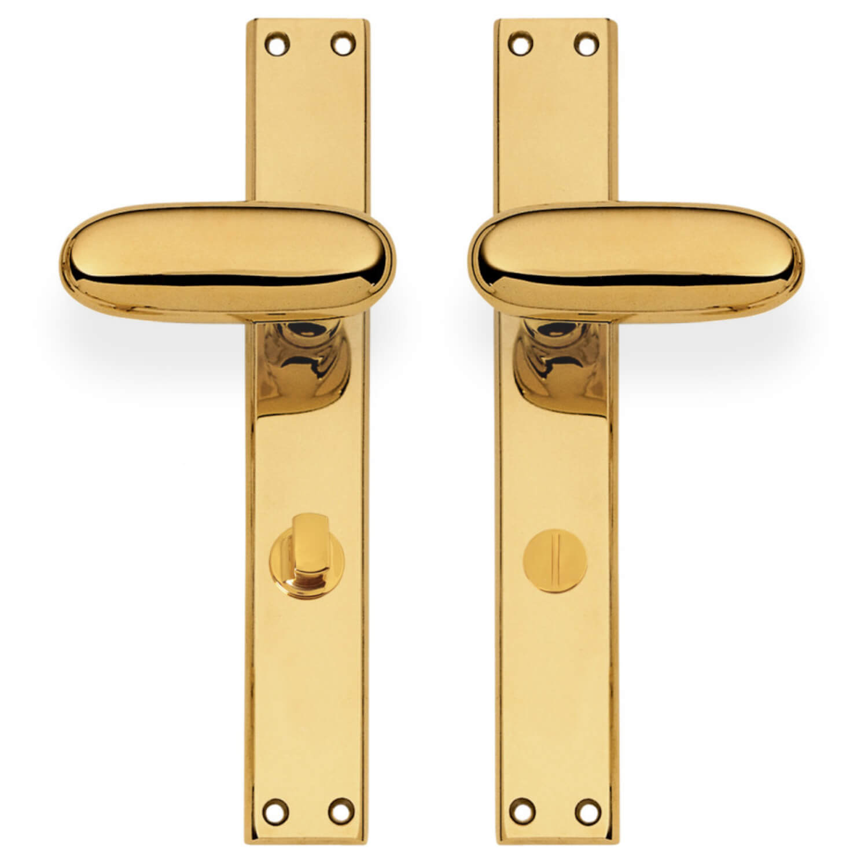 Door Handle With Privacy Lock Interior Brass Back