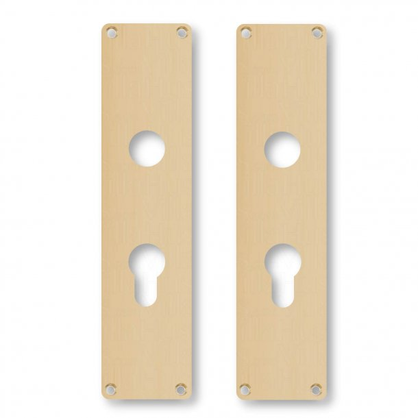 Door back plate L45 G - Brass without lacquer - Euro Profile lock