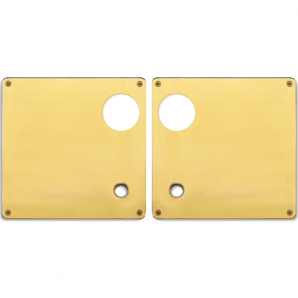 Faconskilt - Dobbelt rundt cylinderhul - Messing - RANDI model 1385 - 175x170x2 mm