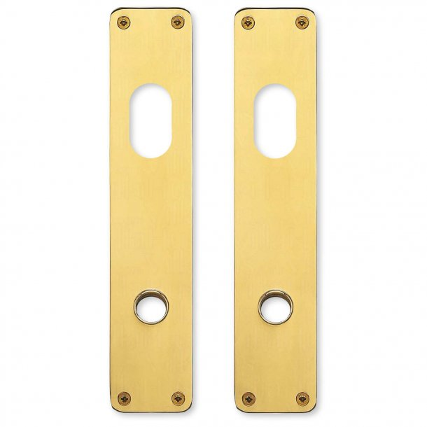 Back plate - Brass - Double cylinder - RANDI Classic Line - Model p3310.92