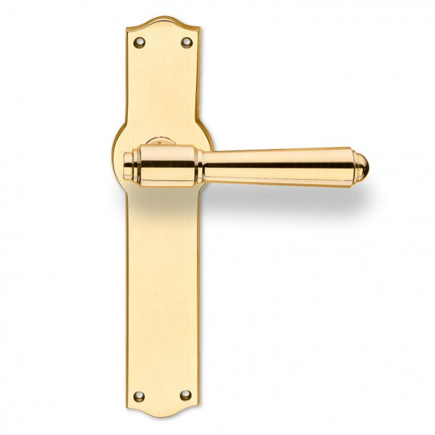 Door handle on Back plate - Exterior - Brass - Model BRIGGS 132mm