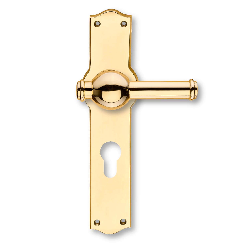 Door handle exterior brass back plates with profile - How to clean exterior brass door handles ...