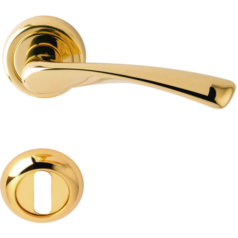 door handle rose brass model galaxy brass door. Black Bedroom Furniture Sets. Home Design Ideas