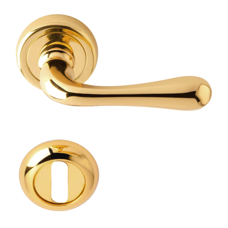 Door handle rose brass model siena brass door for Door handle company