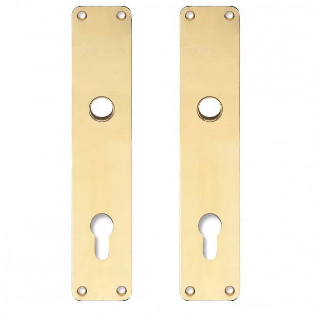 Backplate with Europrofile cylinder hole - cc92mm - Brass without lacquer - Handle hole ø16 - 220x45
