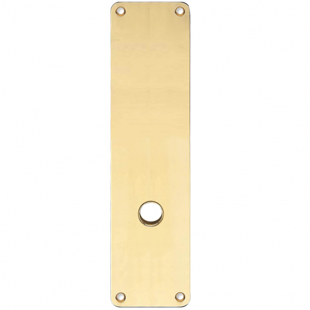 Långa skyltar - Mässing utan lack - ASSA - Handtagshål ø15 - 235x55x2 mm