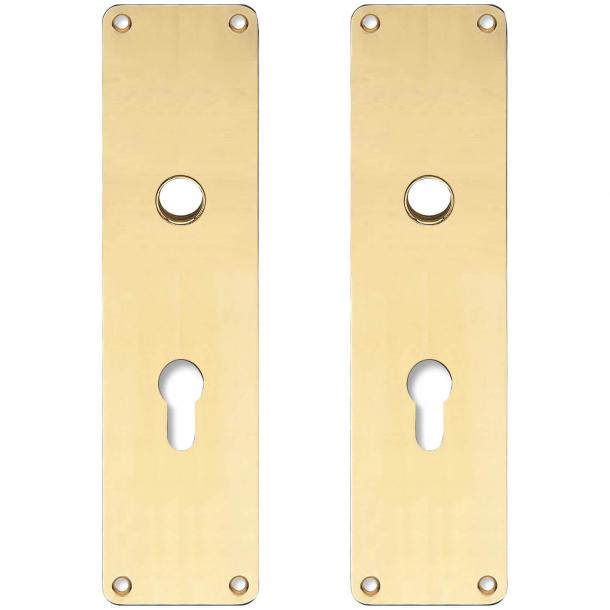 Langskilt med PZ hul - cc72mm - Messing uden lak - Grebshul ø16 - 235x55x2 mm