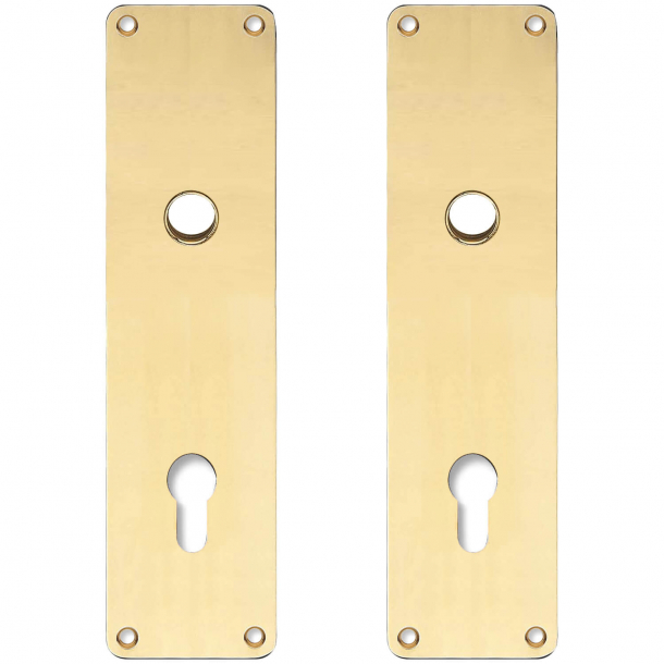 Back plate with Europrofile hole - cc92 mm - Brass without lacquer - Handle hole ø15 - 235x55x2 mm